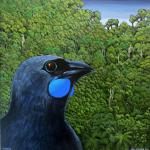 Kokako - Finished Painting 2015-001